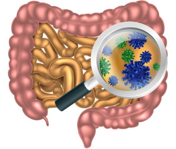 Can Intermittent Fasting Help IBS?